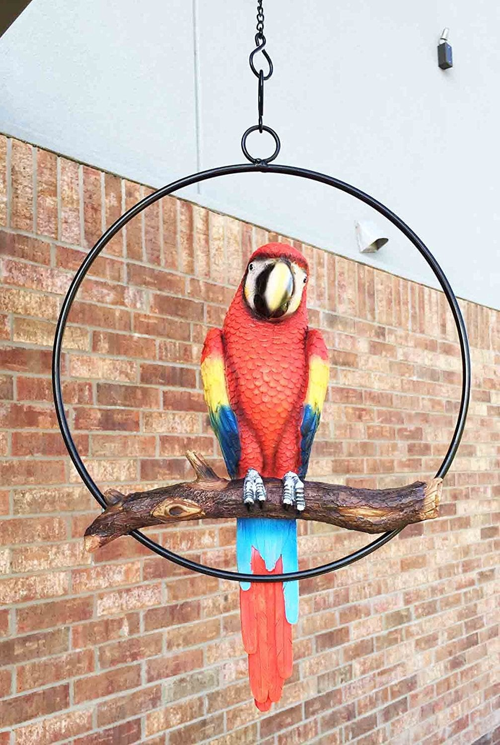 Patio Home & Garden Hanging Scarlet Macaw Parrot Perching on Branch In Metal Round Ring Sculpture For Nature Lovers Tropical Bird Collectors by Gifts & Décor